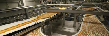 Bakery Products, Biscuit, Cake and Wafer Production Plant